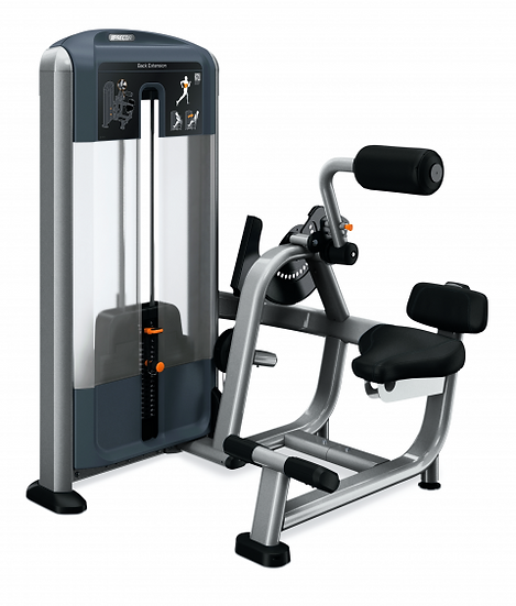 Precor Discovery Back Extension