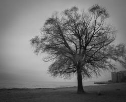Loyola Park_Lake Michigan