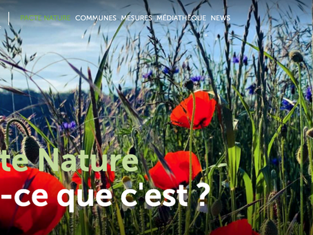 Au Luxembourg, l'aménagement des extérieurs devient un pacte avec la nature