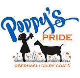 Poppy's Pride Obies.jpeg
