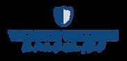 main_logo_navy.png
