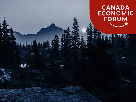 NEWS: New York Forest Bill Would Wrongly Impact Canada