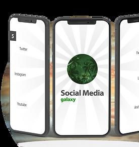 Social Media - N.png