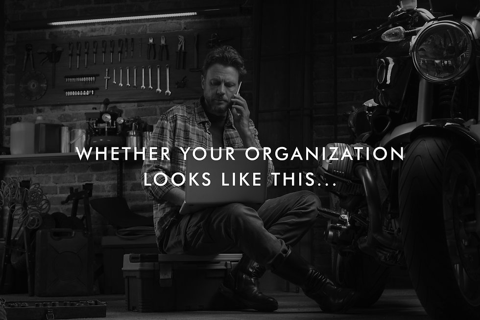 Organization1.jpg