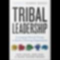 TribalLeadership.png