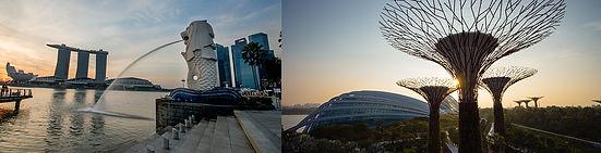 7th AOMSC Singapore
