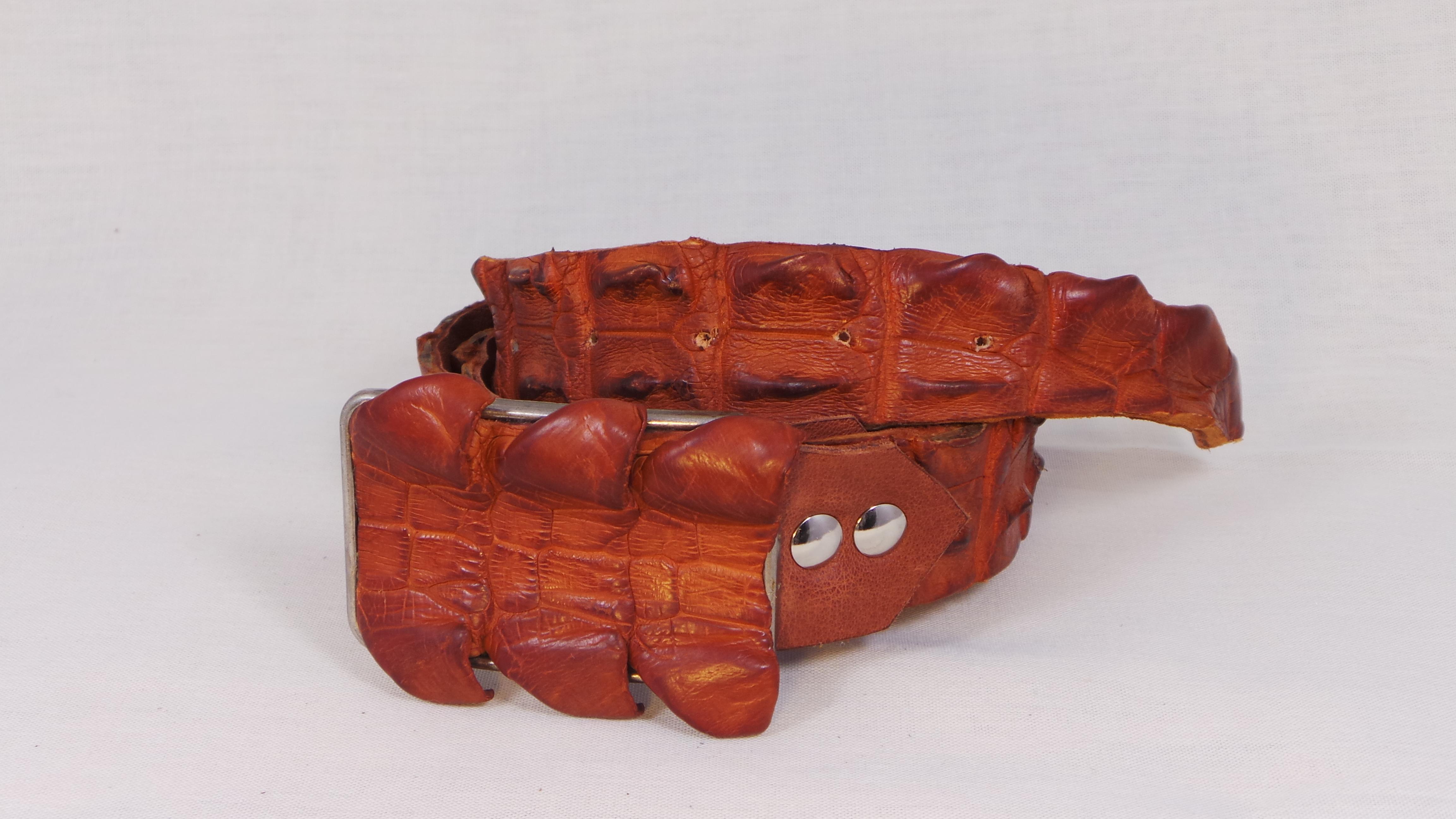 Krokodillen riem met buckle