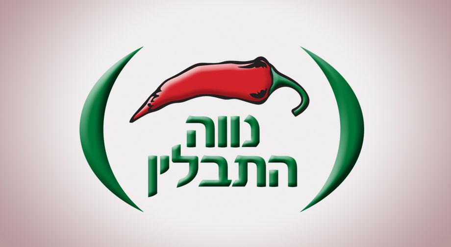 עיצוב לוגו למפעל המפיק תבלינים