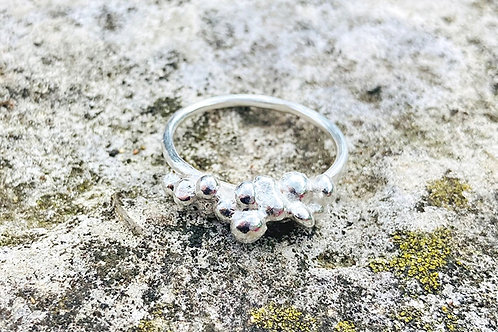 Silver Seed Ring