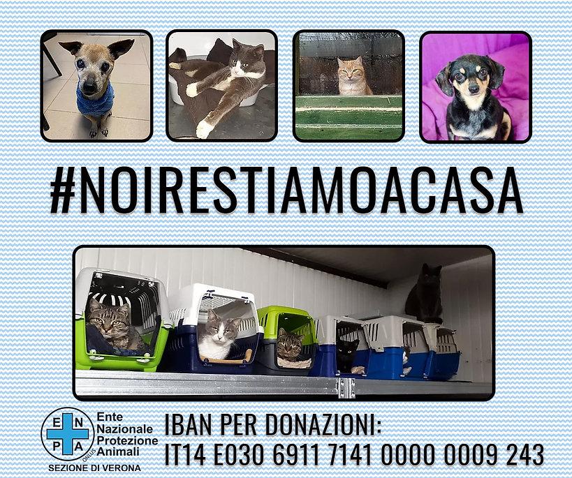 #NOIRESTIAMOACASA_CANI&GATTI.jpg
