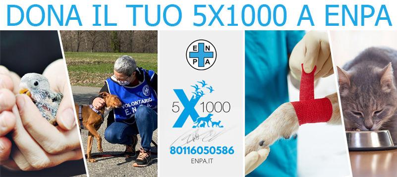 5X1000_2021.jpg