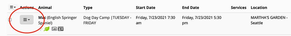 Screen Shot 2021-07-23 at 11.59.41 AM.png