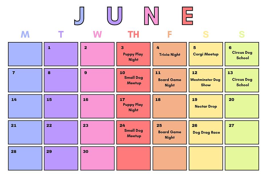 Rainbow Months of the Year Calendar (3).