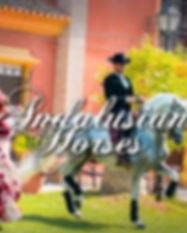 andalusian-horse-cartagena.jpg