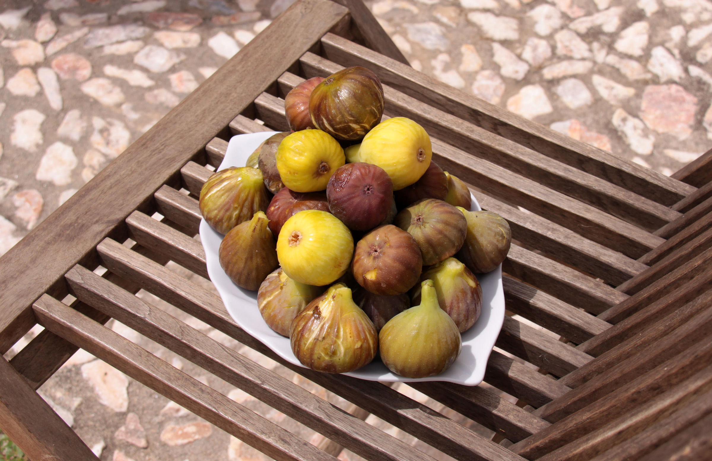 Caught some amazing figs