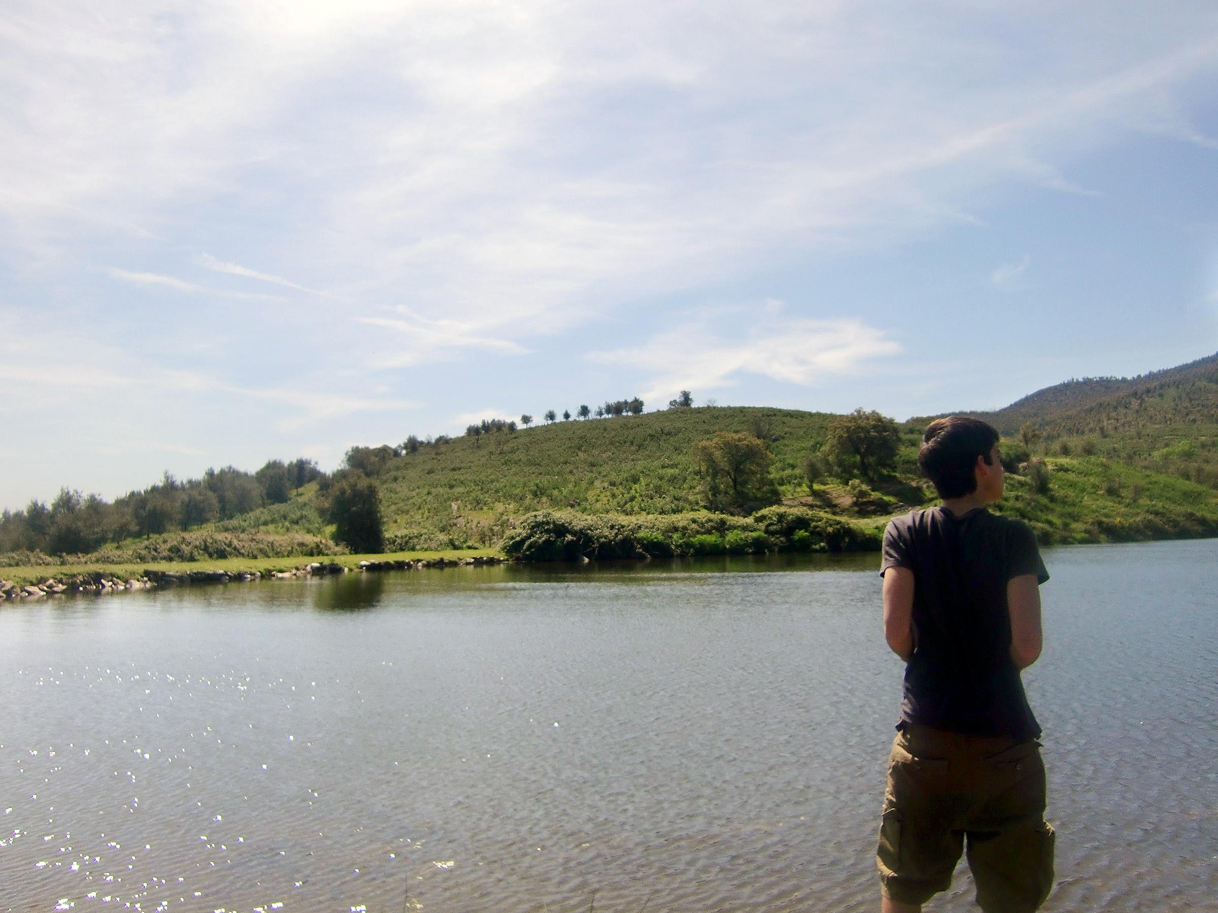 What a landscape
