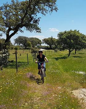 bike_03.jpg