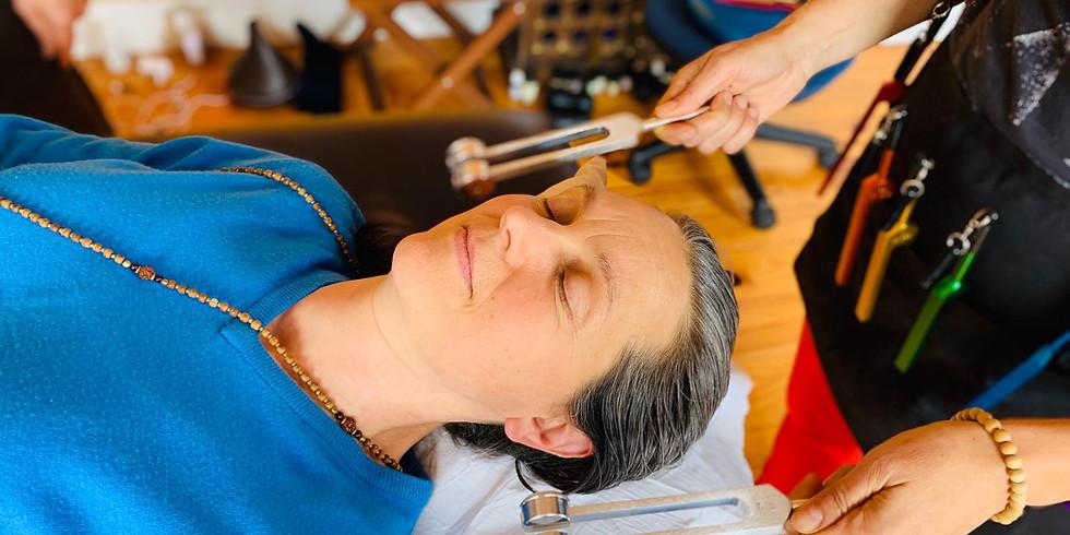 Sound Therapist training, Phase one (1)