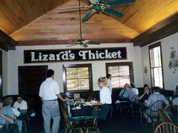 Lizards Thicket interior_edited