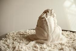 Tapestry Lion - Posterior - Till