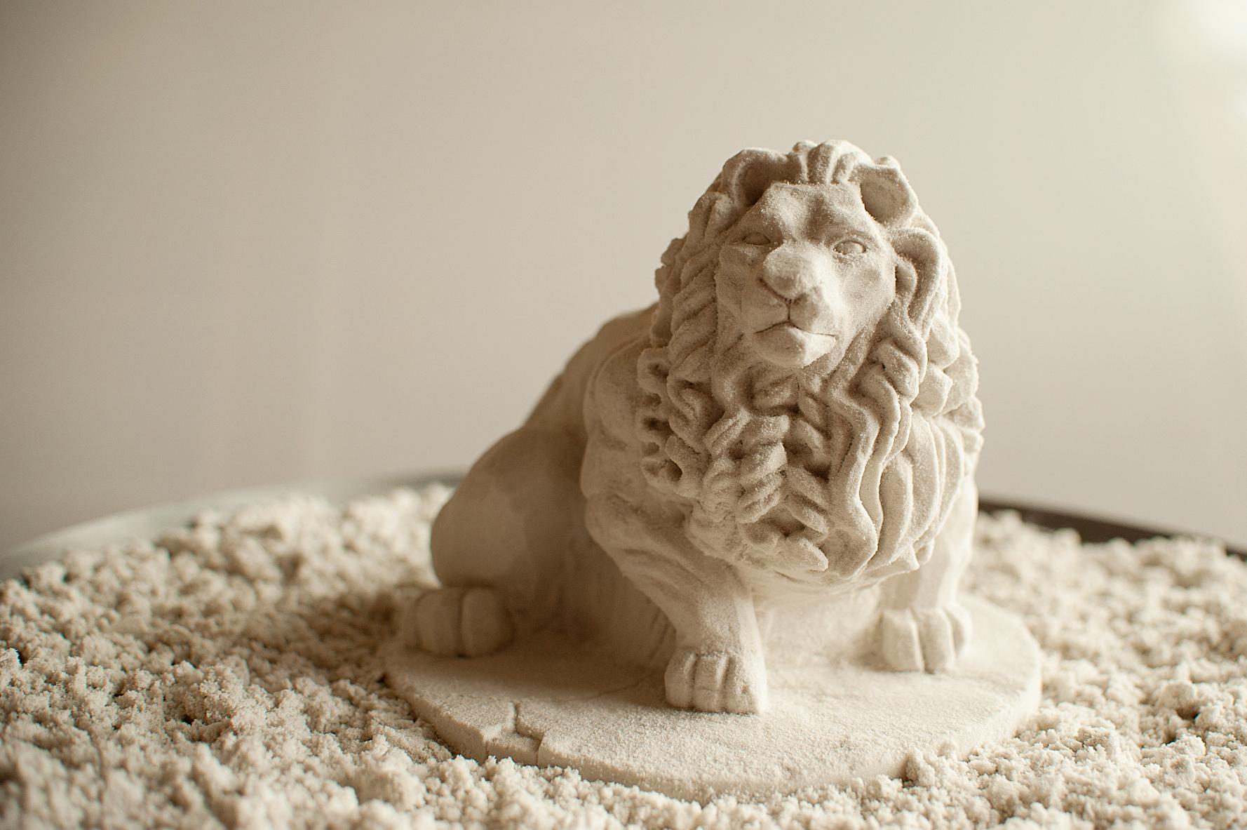 Lion-1476.jpg