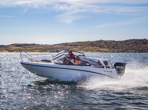 AMT 190BR Action 18.jpg