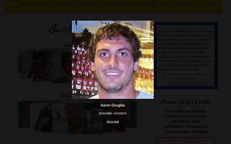 aaron douglas example.JPG