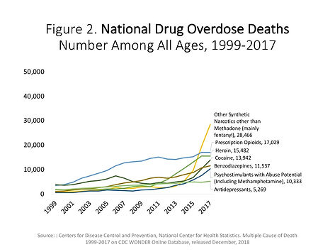 National Drug Overdose Deaths Fig2.jpg