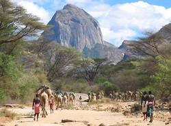 Camelsafaria mountain