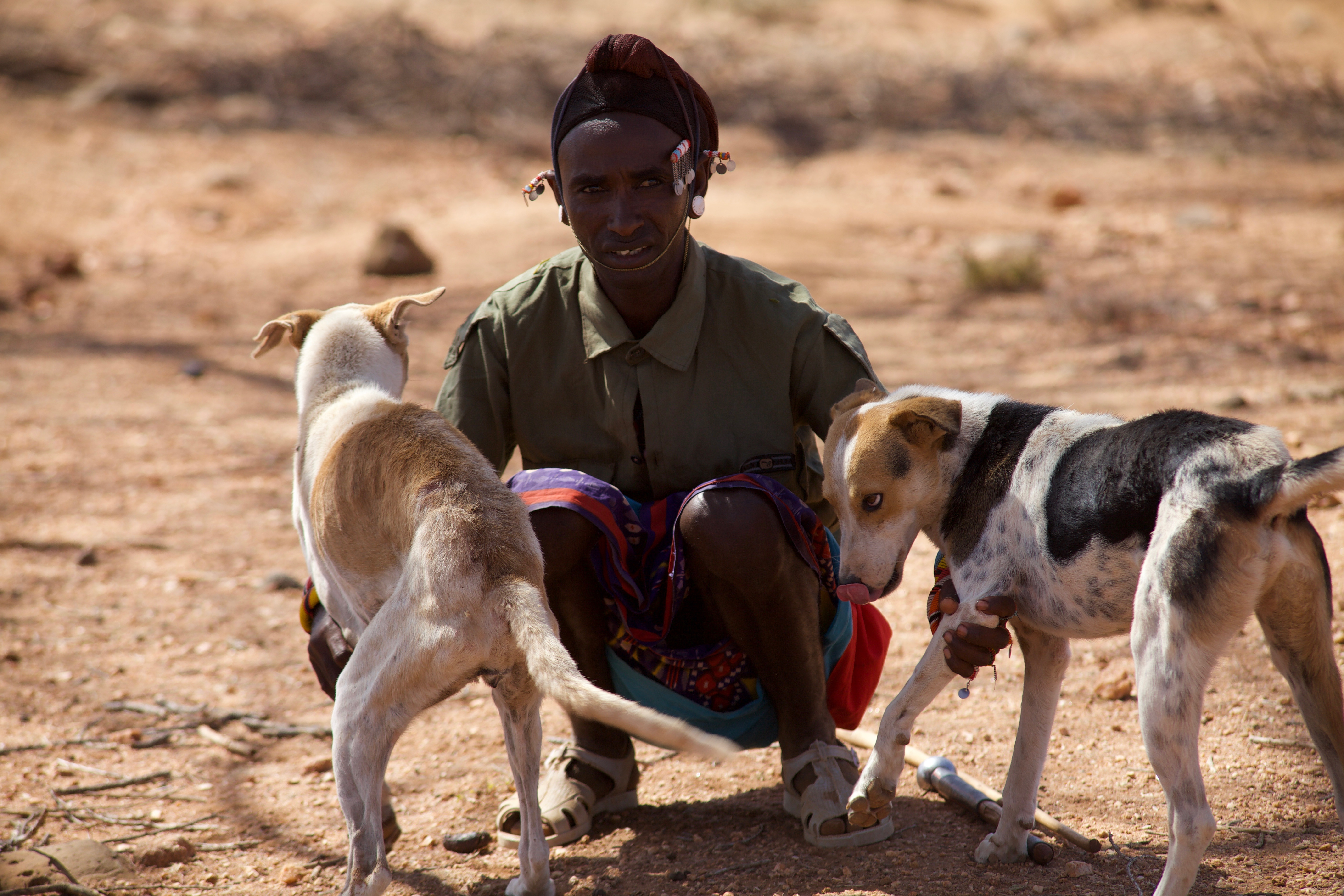 A warrior with his very faithful hounds