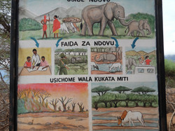 Sidai message.. Live with Elephants they are friendly 14