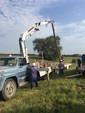 Trabajos de mantenimiento en Zona Rural de Espinillo