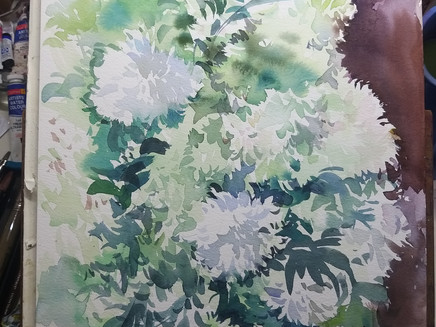 How To Paint a High Key Floral Painting in Watercolour ?