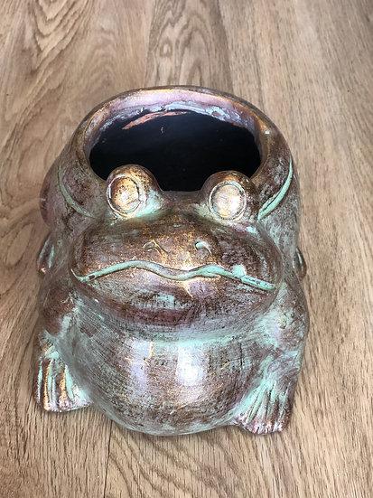 Terracotta frog plater sm