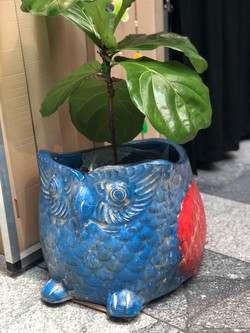 Terracotta owl planter lg blue