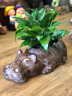 Terracotta hippo planter