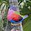 Thumbnail: Ceramic bird wind chime