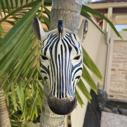 Wall hung ceramic zebra vase