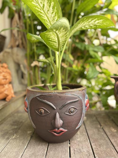 Terracotta plant pot face