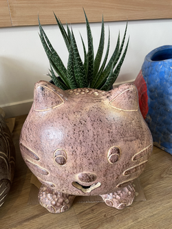 Terracotta kitty planter brown