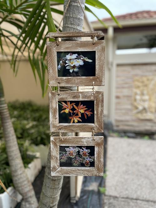 """Hanging photo frame 4""""x6"""" (3) #3"""
