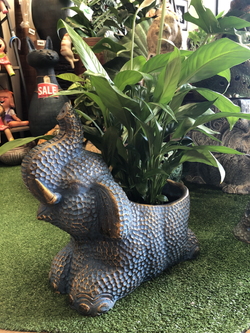 Terracotta elephant planter lg blue