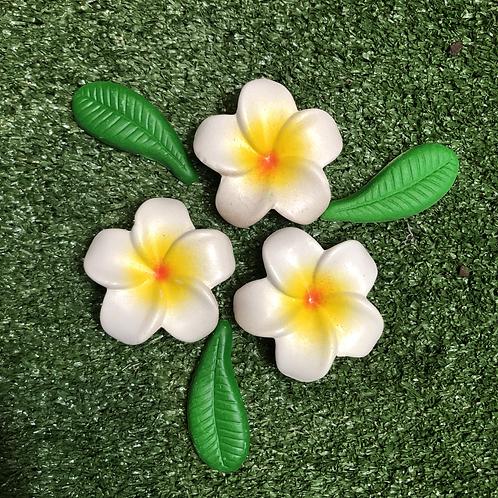Loose ceramic frangipani set