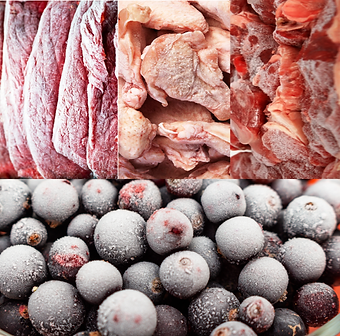 Blast-frozen-foods.png