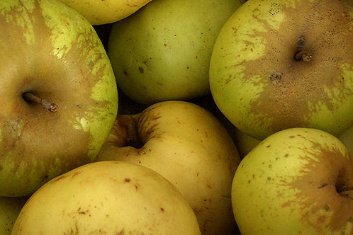 ვაშლი ბროცკი 1კგ (ქართ)