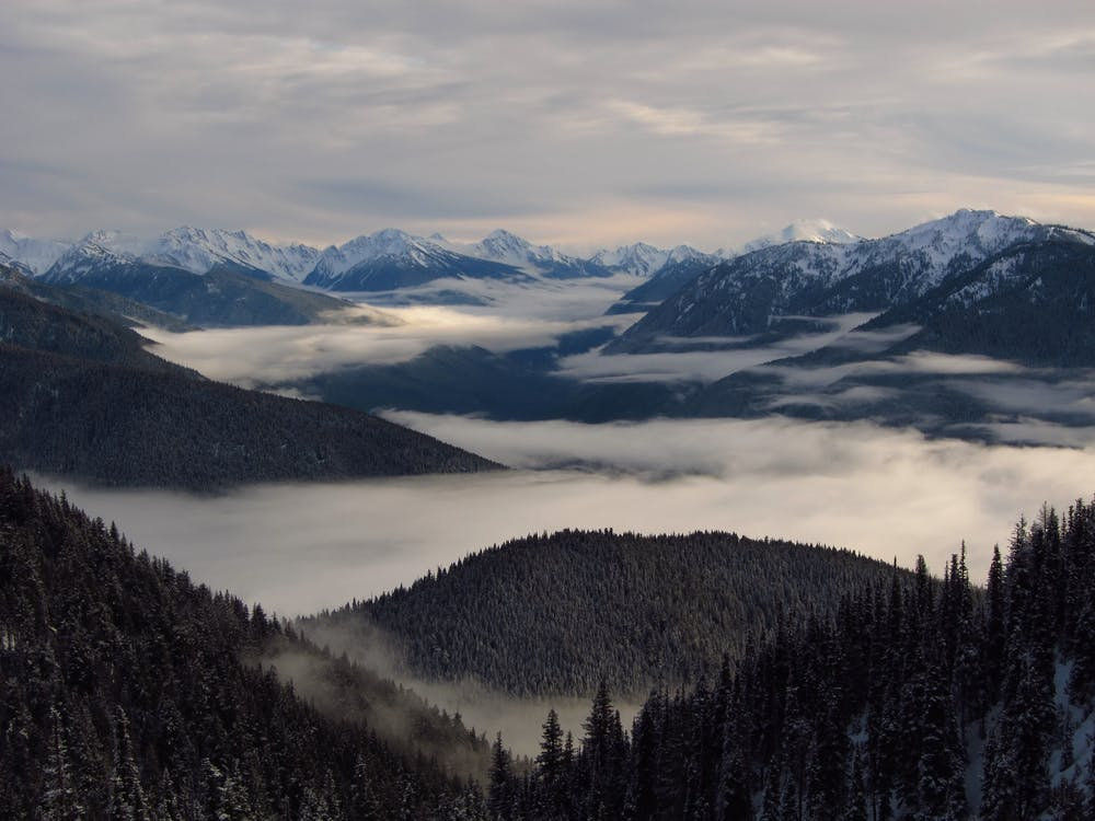 landscape-fog-olympic-mountains-mist-163