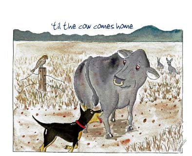 'til the cow comes home