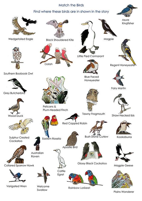 GWP Birds.jpg