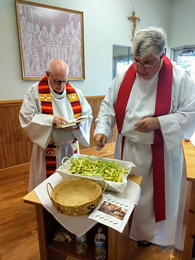 Blessing of the Palms.jpg