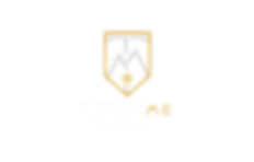 Logo Trick Me Show Football Freestyle spectacle initiation animation freestyle football artiste performance paris animateur lyon lille nantes corentin baron street soccer uban soirée match évènement club stade démonstation